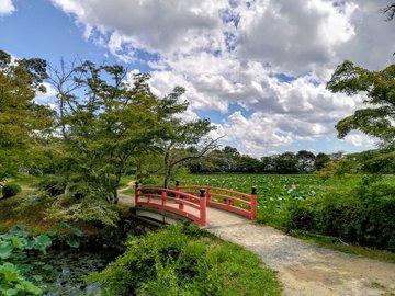 Kyoto Adventures – Daikakuji