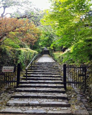 Kyoto Adventures – Ohara